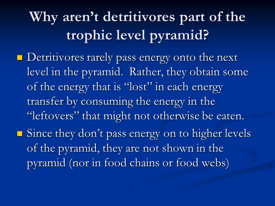 Why aren't detritivores part of the trophic level pyramid