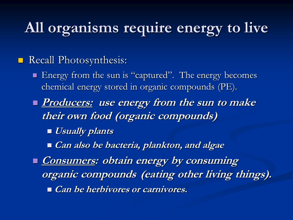 All organisms require energy to live
