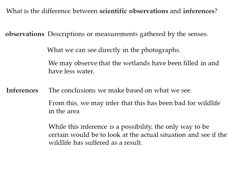 What is the difference between scientific observations and inferences