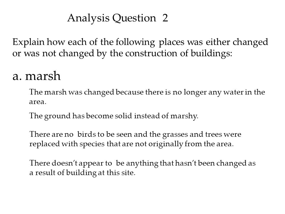 a. marsh Analysis Question 2