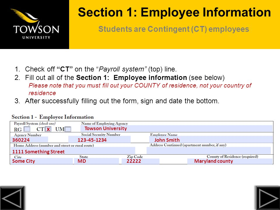 Section 1: Employee Information Students are Contingent (CT) employees