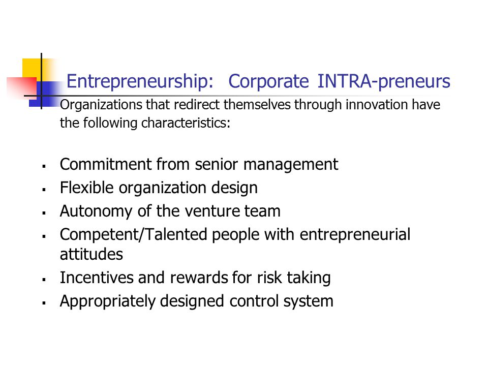 Entrepreneurship: Corporate INTRA-preneurs