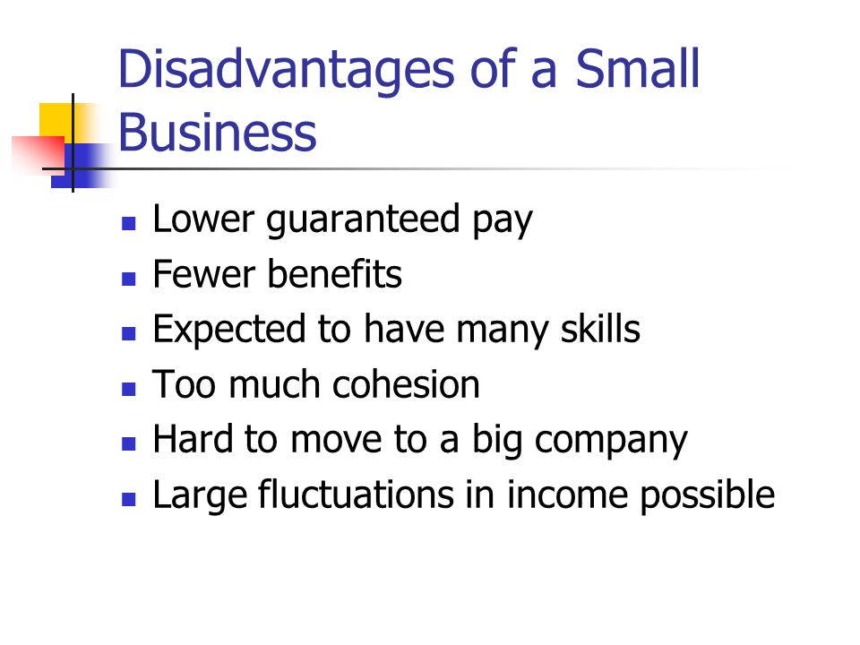 Disadvantages of a Small Business
