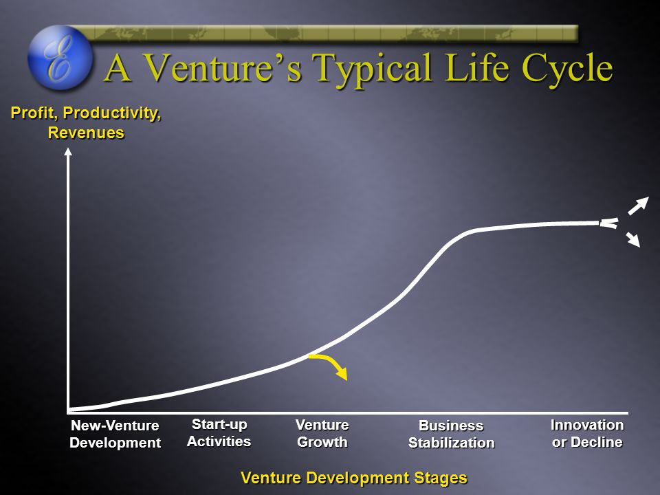 A Venture's Typical Life Cycle