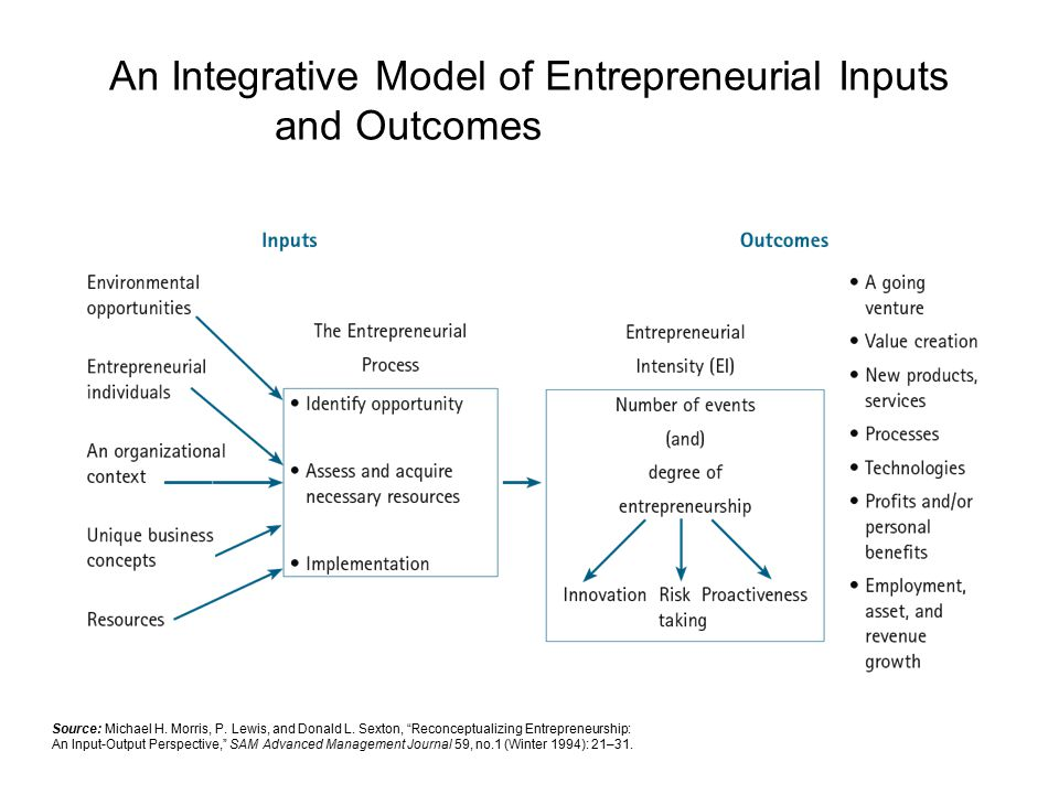 An Integrative Model of Entrepreneurial Inputs and Outcomes