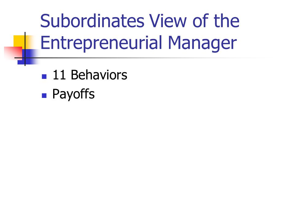 Subordinates View of the Entrepreneurial Manager