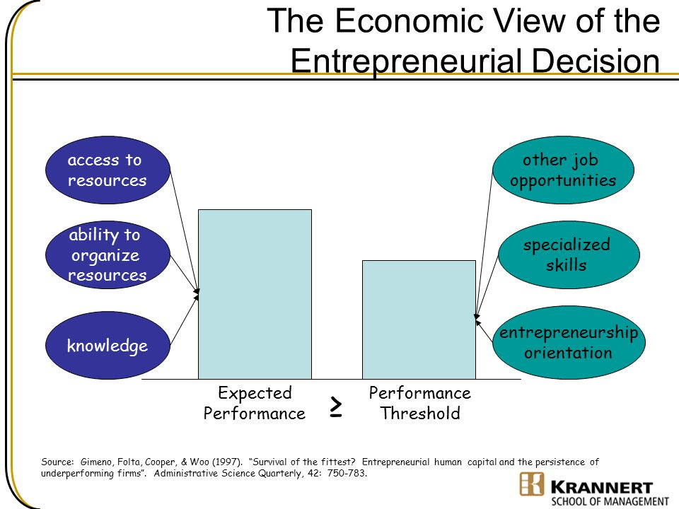 The Economic View of the Entrepreneurial Decision
