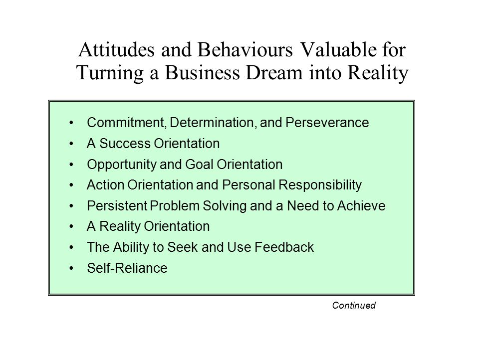 Attitudes and Behaviours Valuable for Turning a Business Dream into Reality