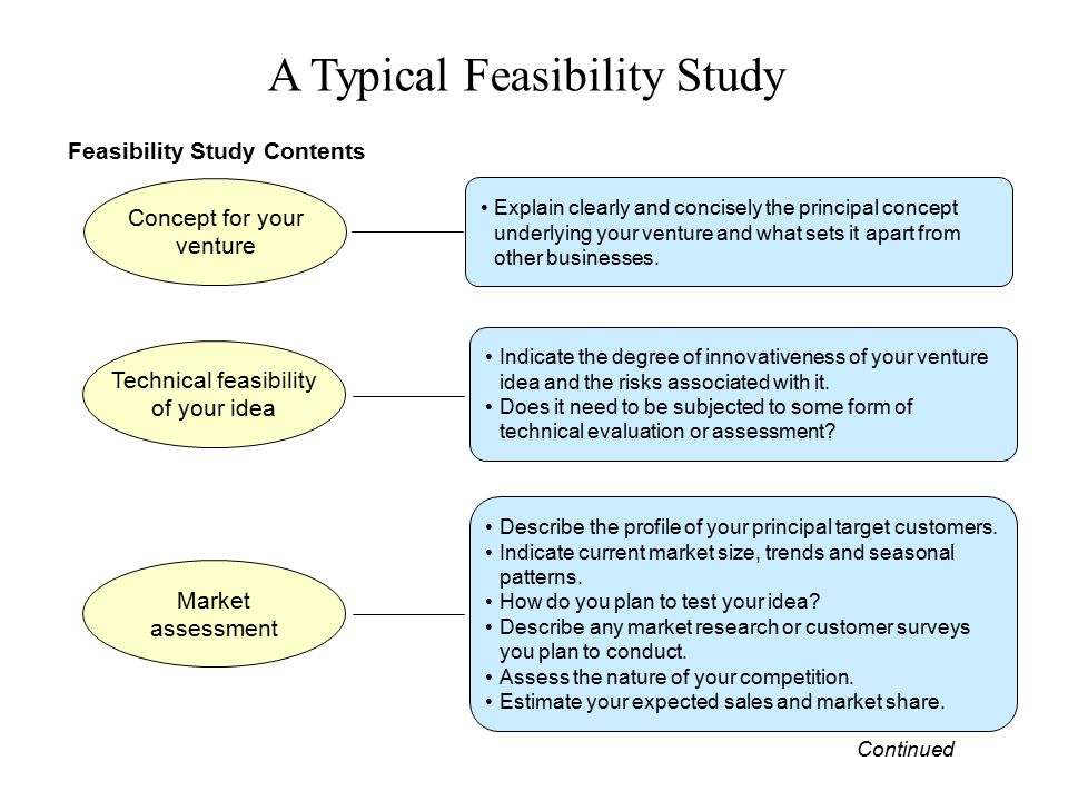 Feasibility Study Contents