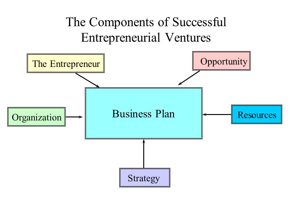 The Components of Successful Entrepreneurial Ventures