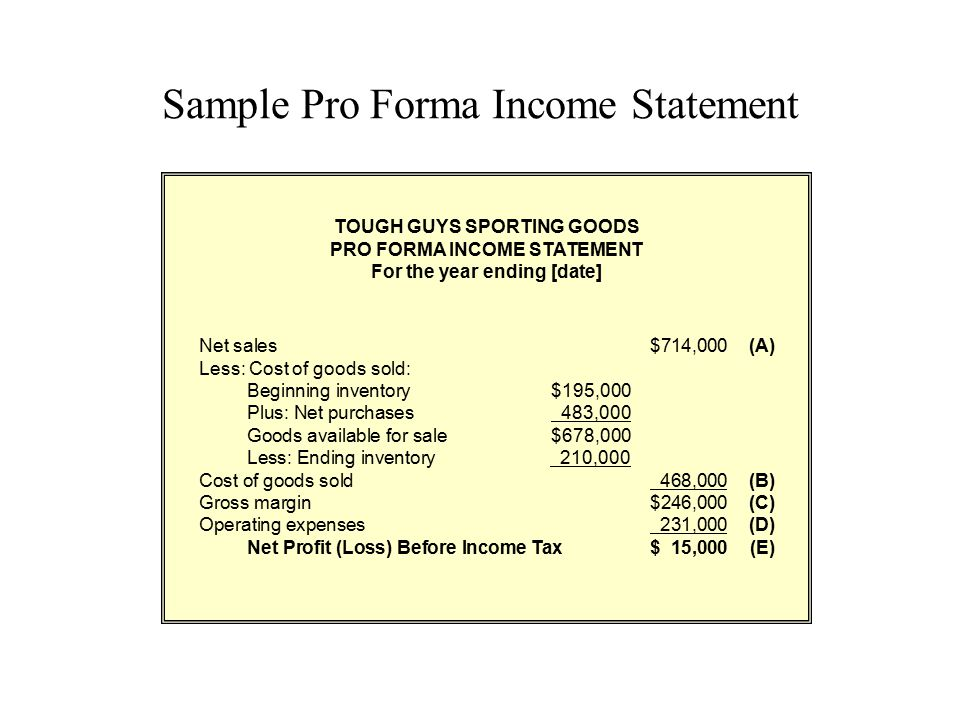 Sample Pro Forma Income Statement