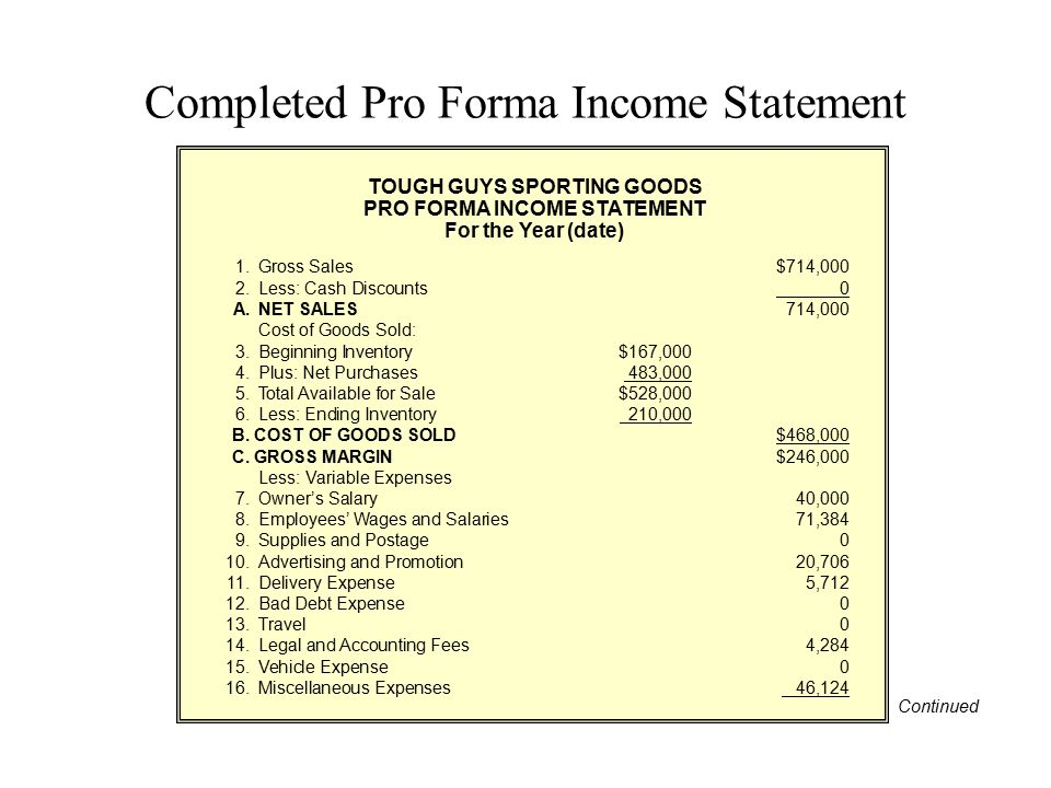 Completed Pro Forma Income Statement