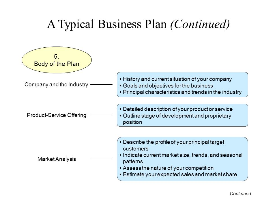 A Typical Business Plan (Continued)