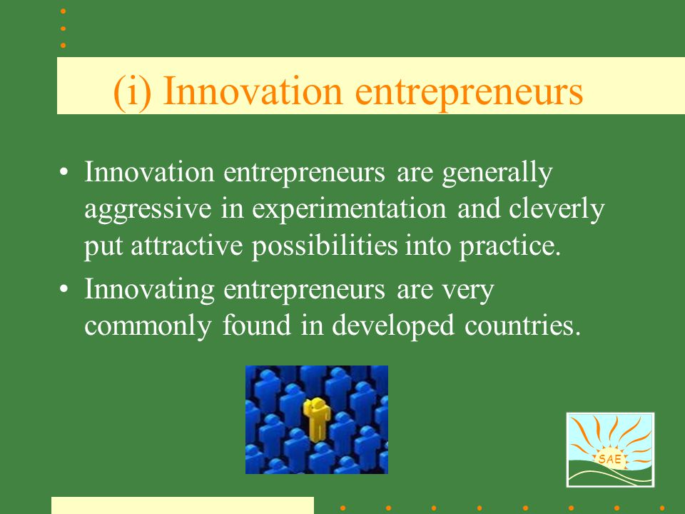 (i) Innovation entrepreneurs