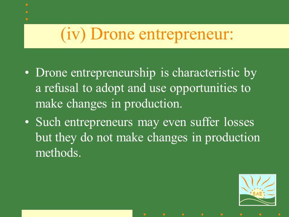(iv) Drone entrepreneur: