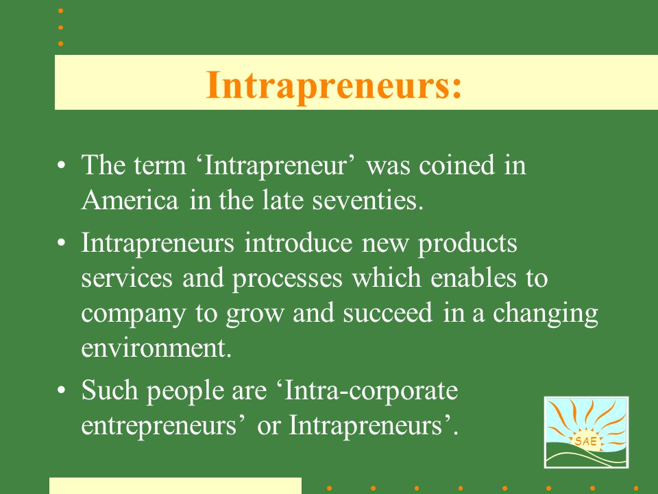 Intrapreneurs: The term 'Intrapreneur' was coined in America in the late seventies.