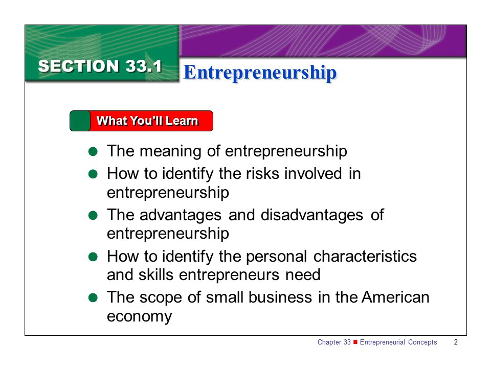 Entrepreneurship SECTION 33.1 The meaning of entrepreneurship