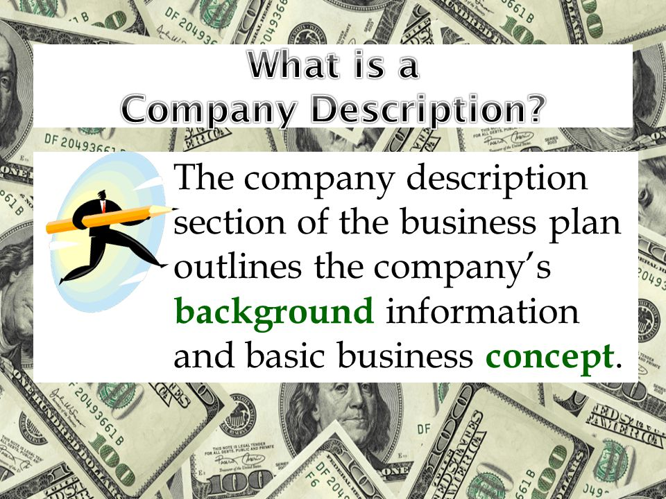 What is a Company Description