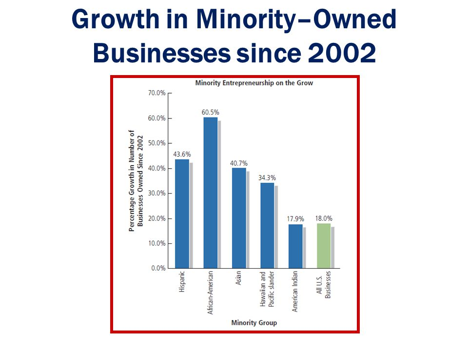Growth in Minority–Owned Businesses since 2002