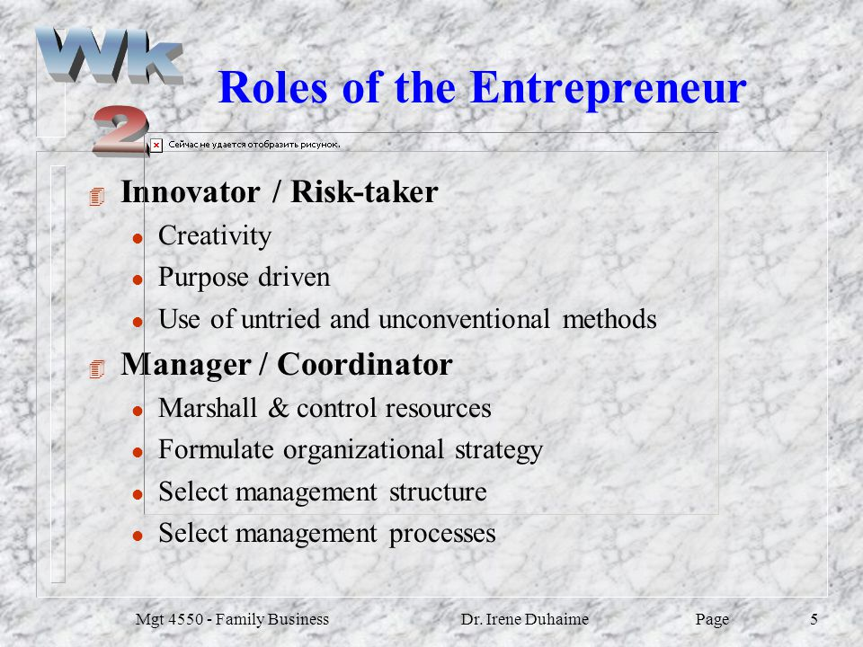 Roles of the Entrepreneur