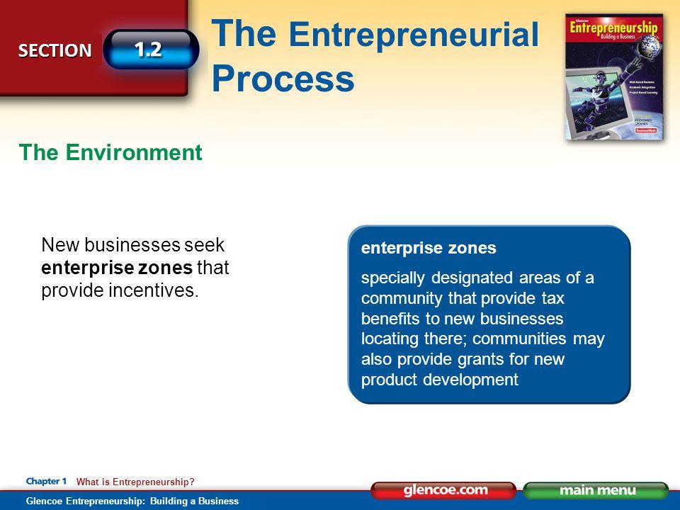 The Environment New businesses seek enterprise zones that provide incentives. enterprise zones.