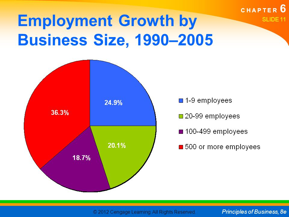 Employment Growth by Business Size, 1990–2005