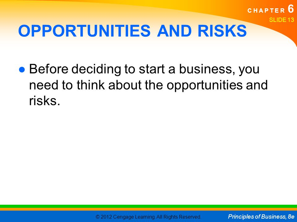OPPORTUNITIES AND RISKS