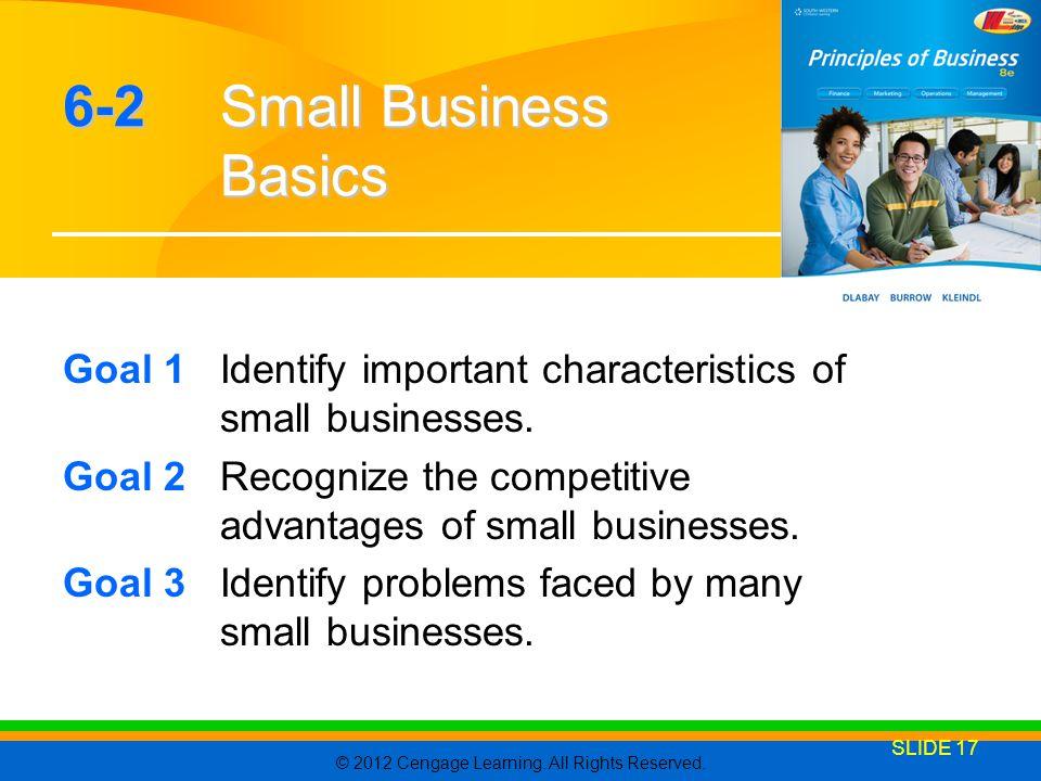 6-2 Small Business Basics