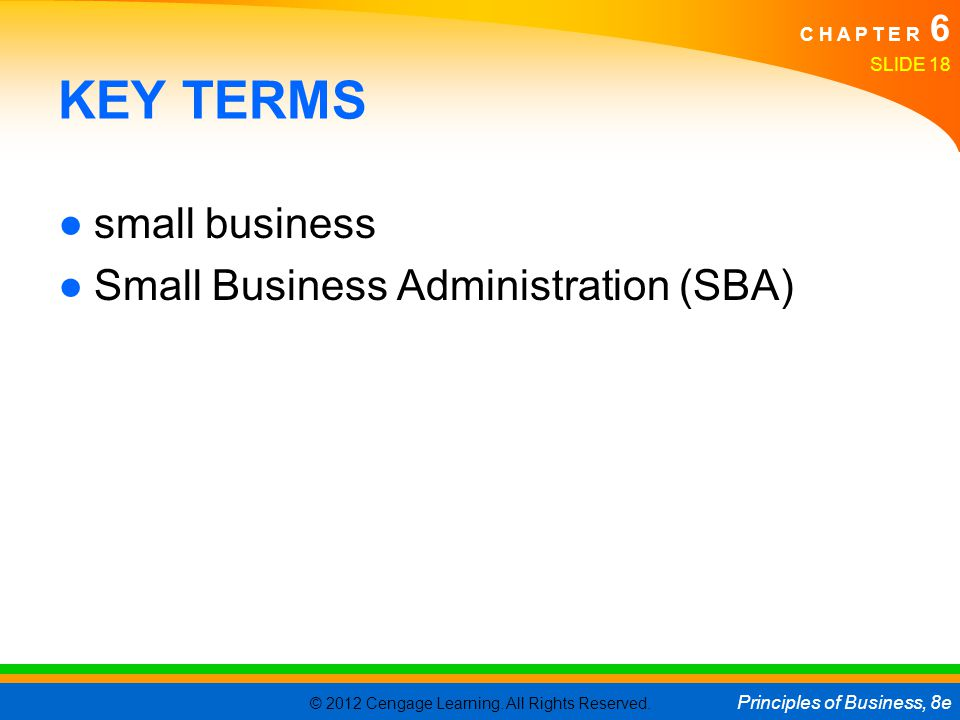 KEY TERMS small business Small Business Administration (SBA)