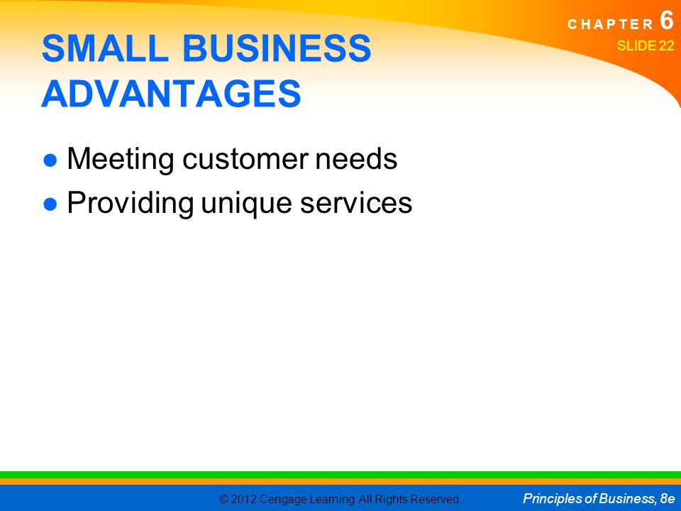 SMALL BUSINESS ADVANTAGES