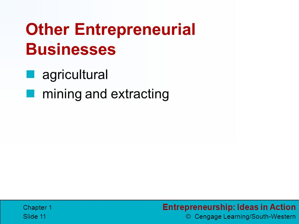 Other Entrepreneurial Businesses