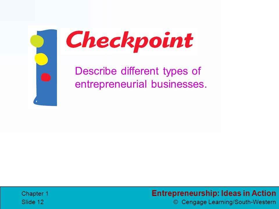 Describe different types of entrepreneurial businesses.