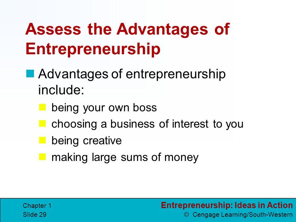 Assess the Advantages of Entrepreneurship