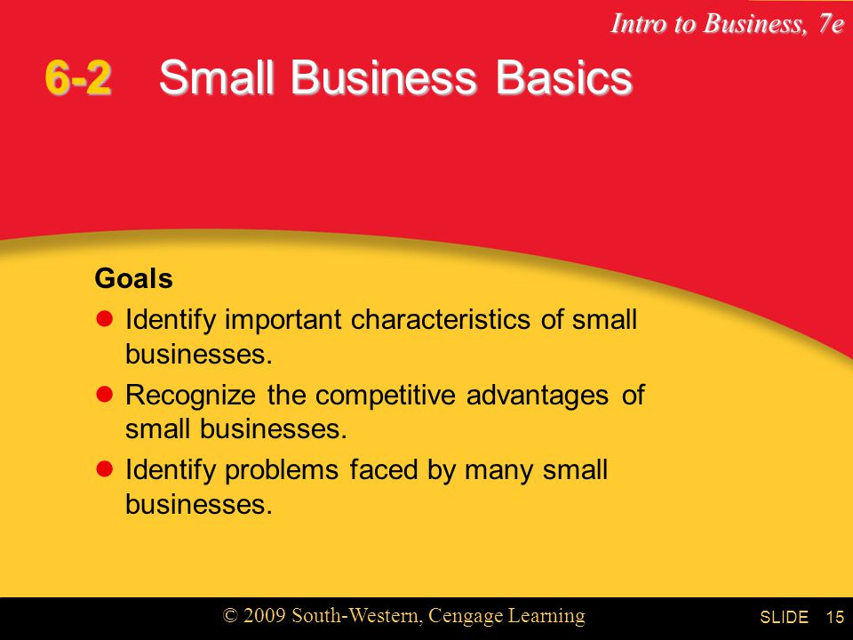 6-2 Small Business Basics Goals