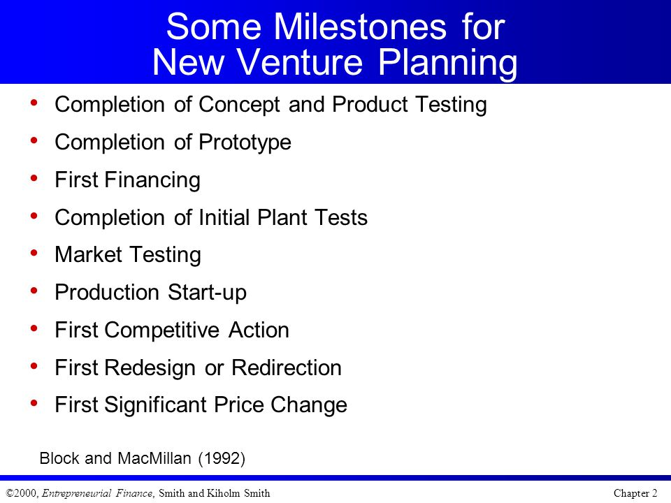 Some Milestones for New Venture Planning
