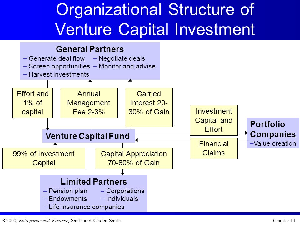 Organizational Structure of Venture Capital Investment