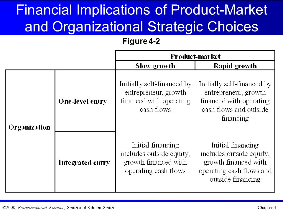 Financial Implications of Product-Market and Organizational Strategic Choices