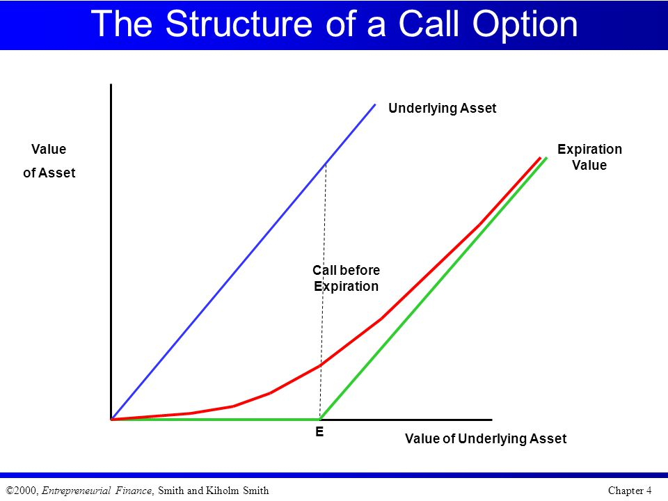 The Structure of a Call Option