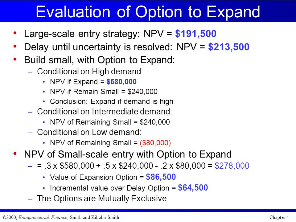Evaluation of Option to Expand