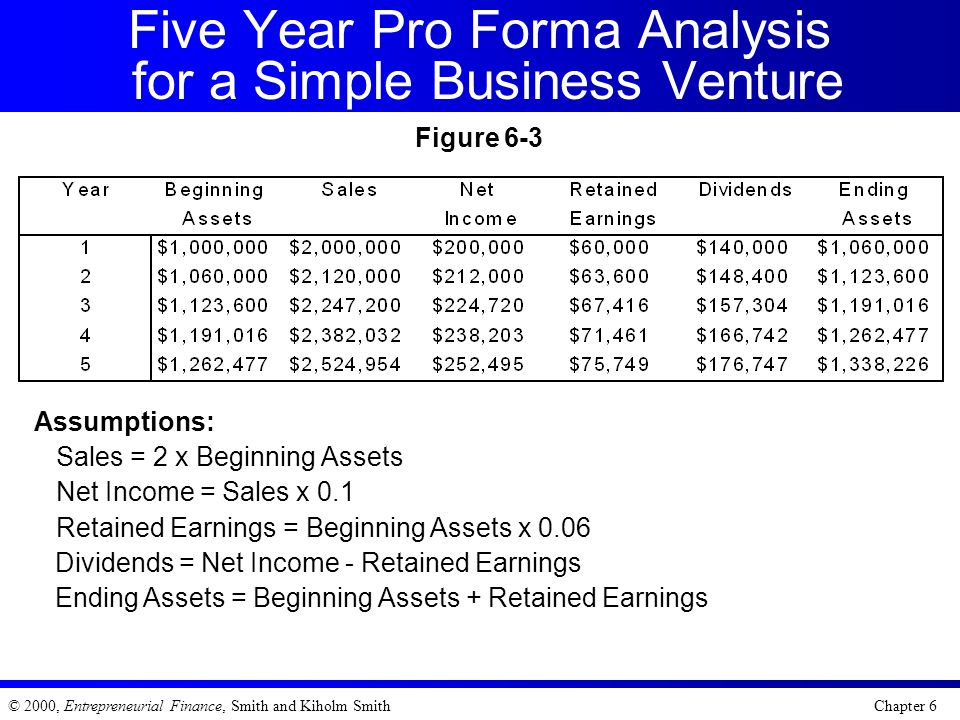 Five Year Pro Forma Analysis for a Simple Business Venture