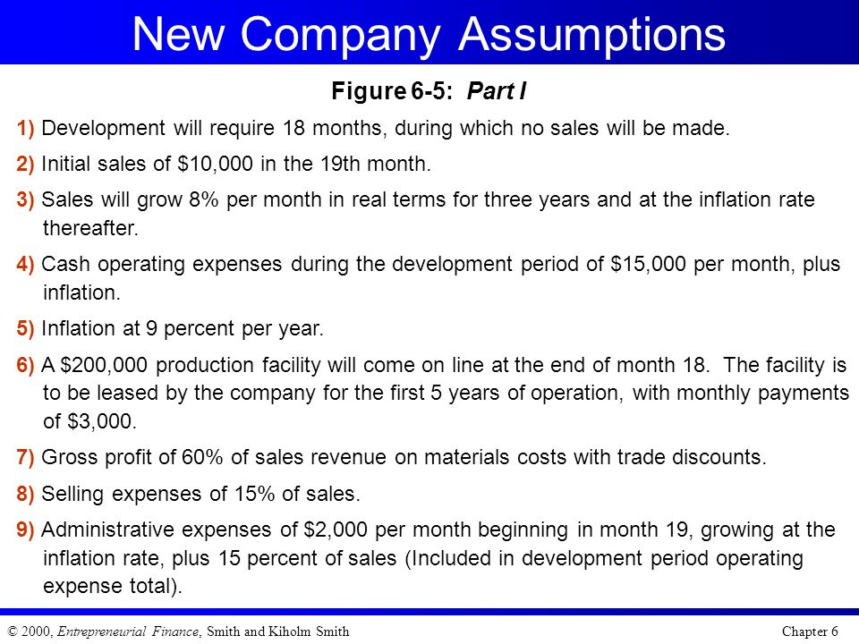 New Company Assumptions