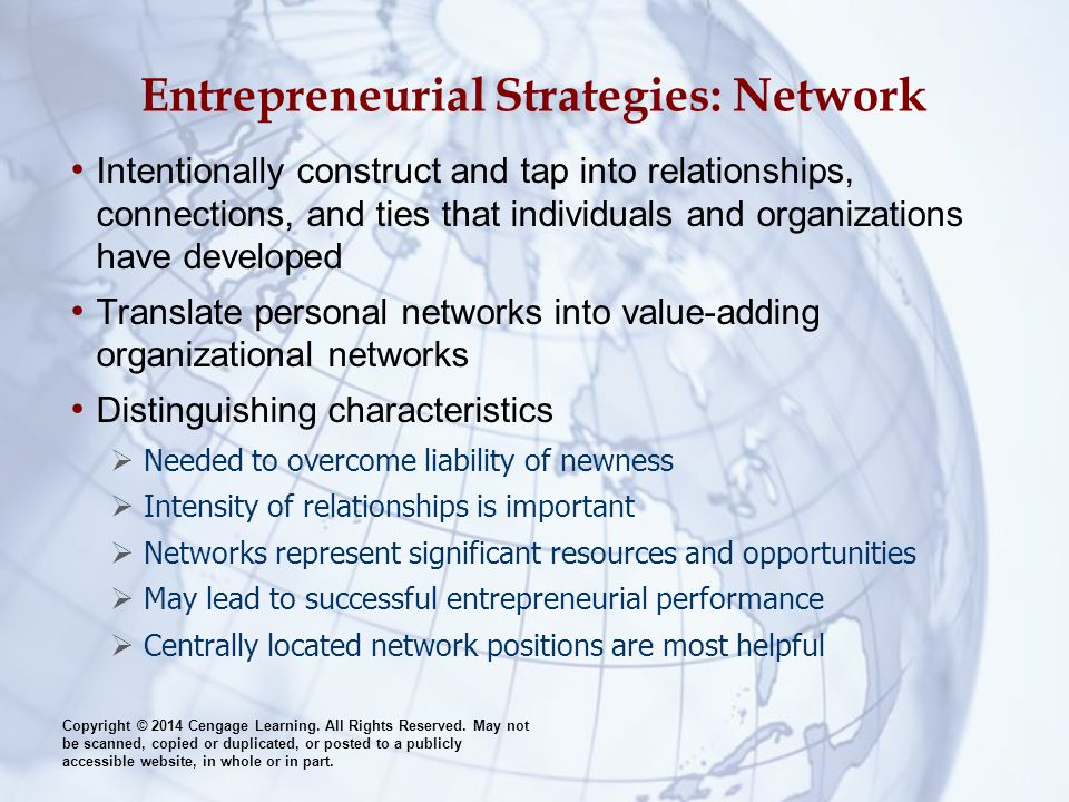 Entrepreneurial Strategies: Network