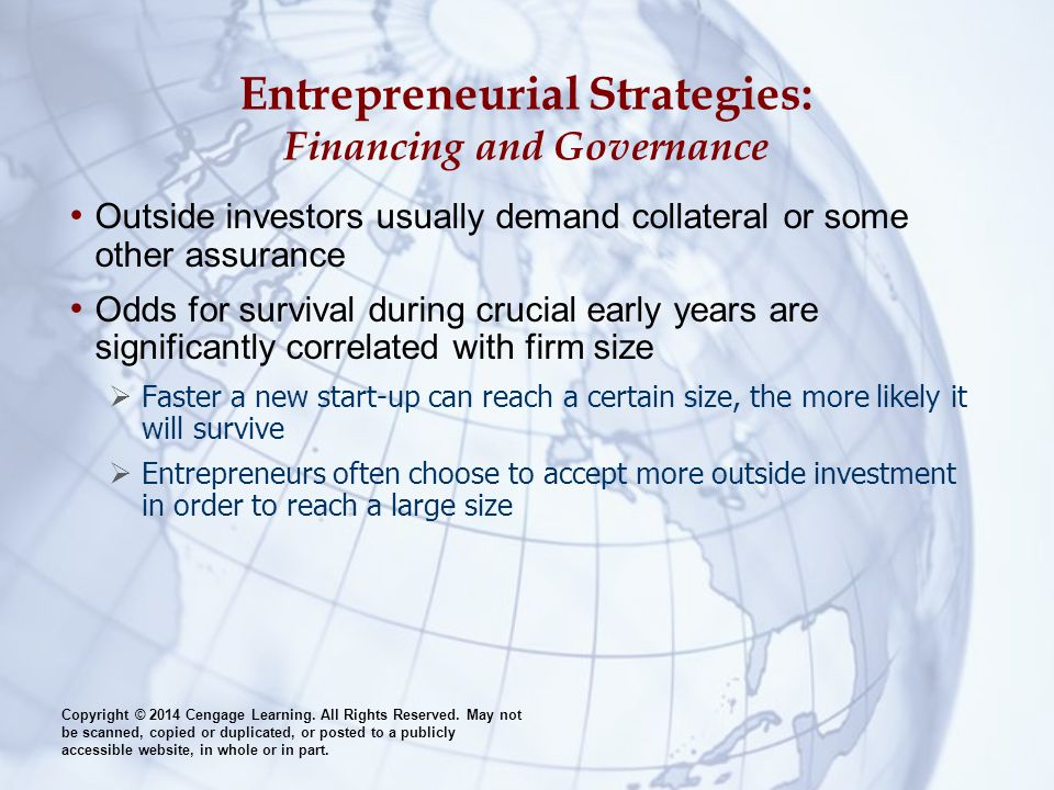 Entrepreneurial Strategies: Financing and Governance