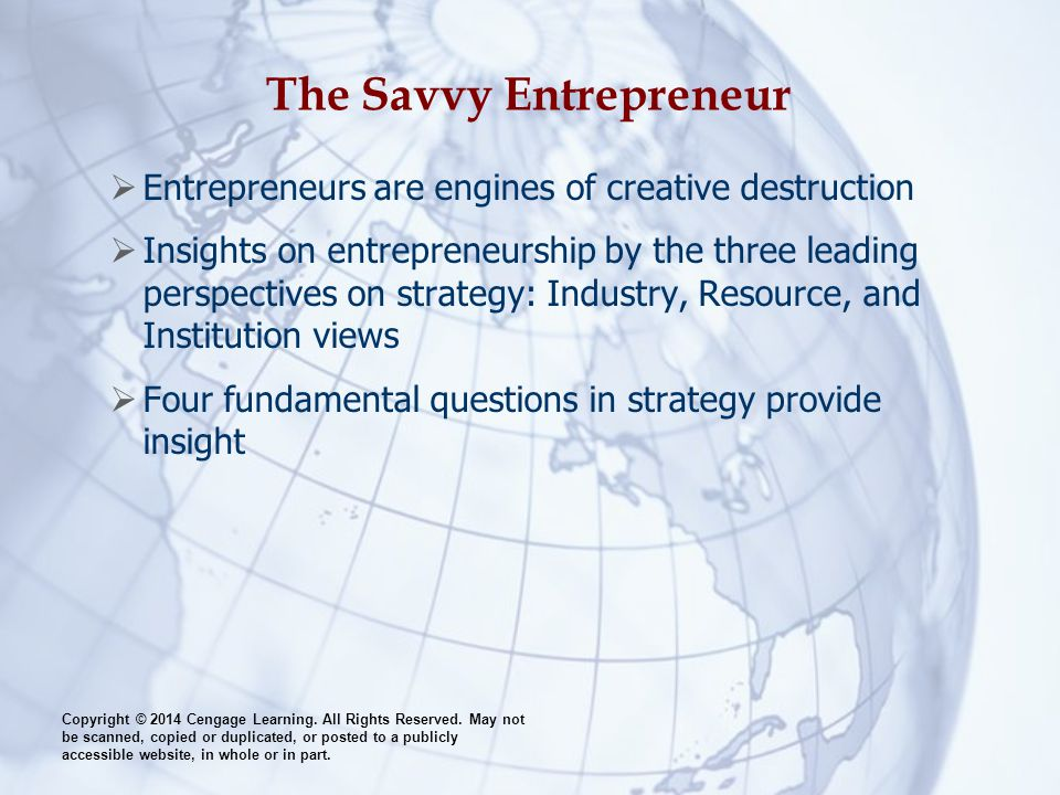 The Savvy Entrepreneur