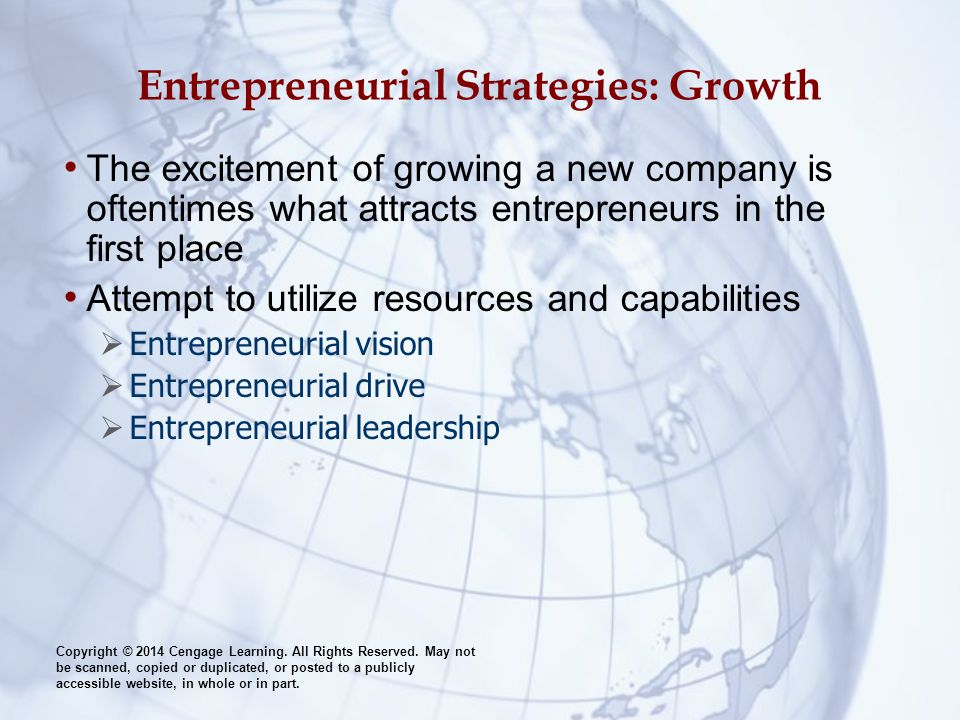 Entrepreneurial Strategies: Growth