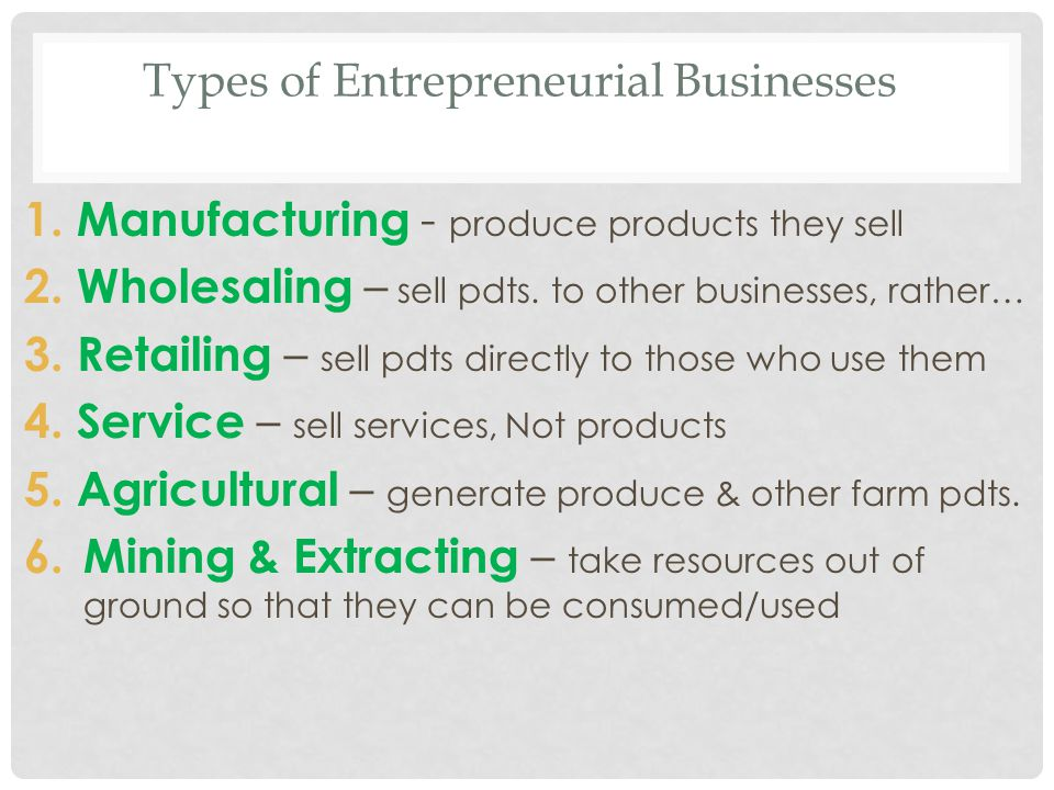 Types of Entrepreneurial Businesses