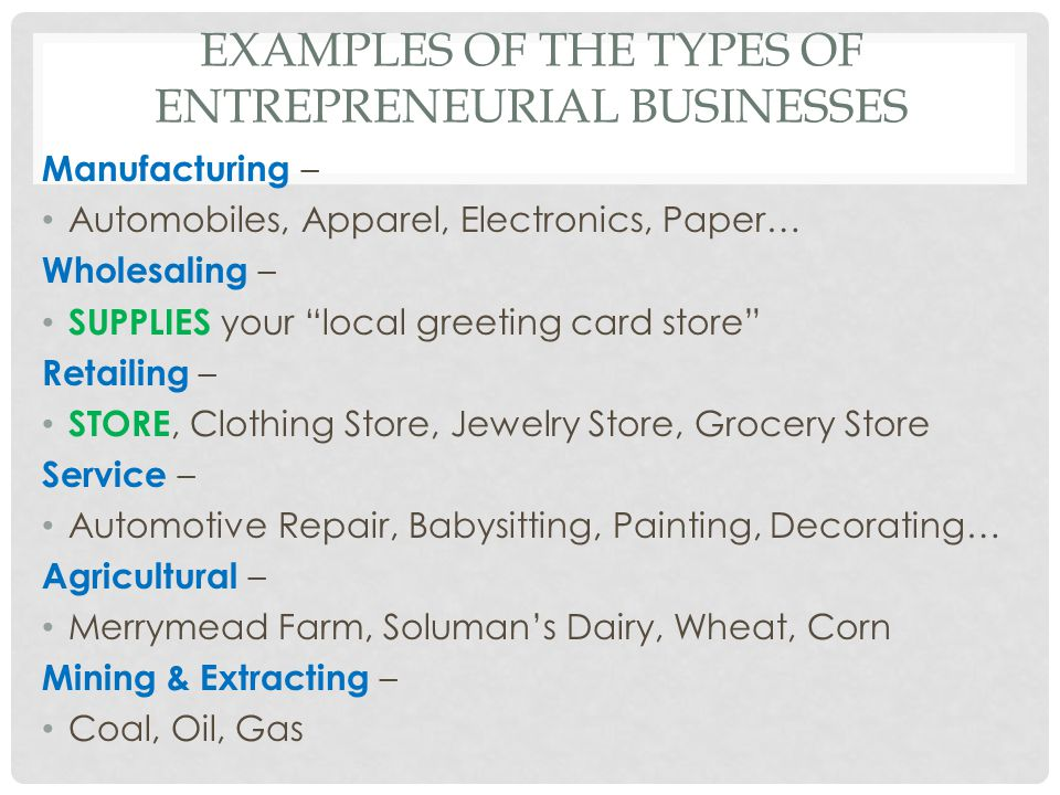 Examples of the Types of Entrepreneurial businesses