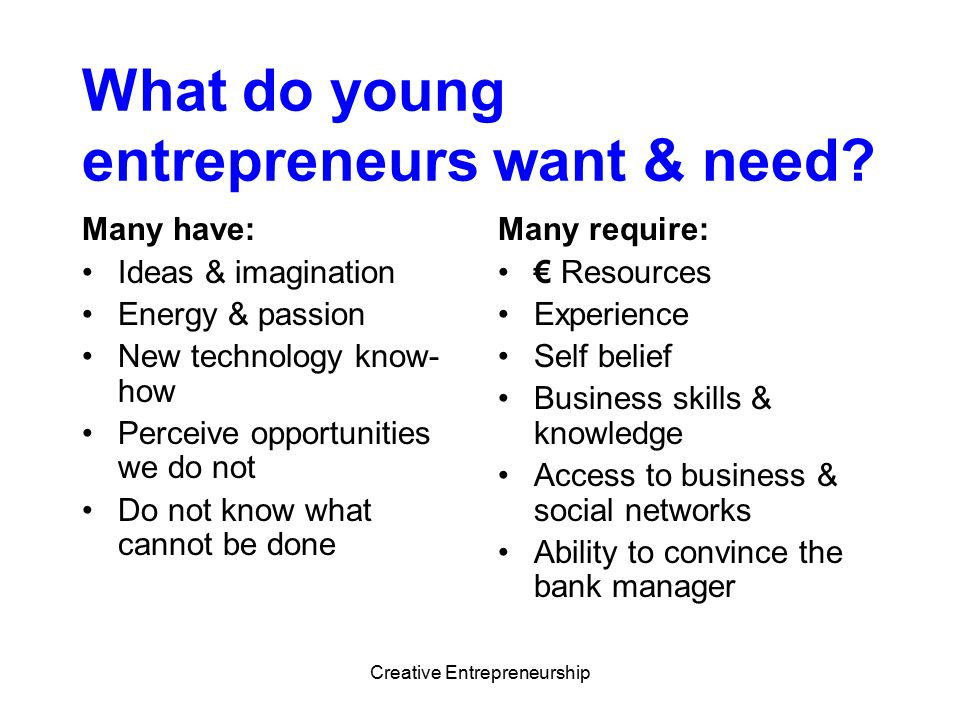 What do young entrepreneurs want & need