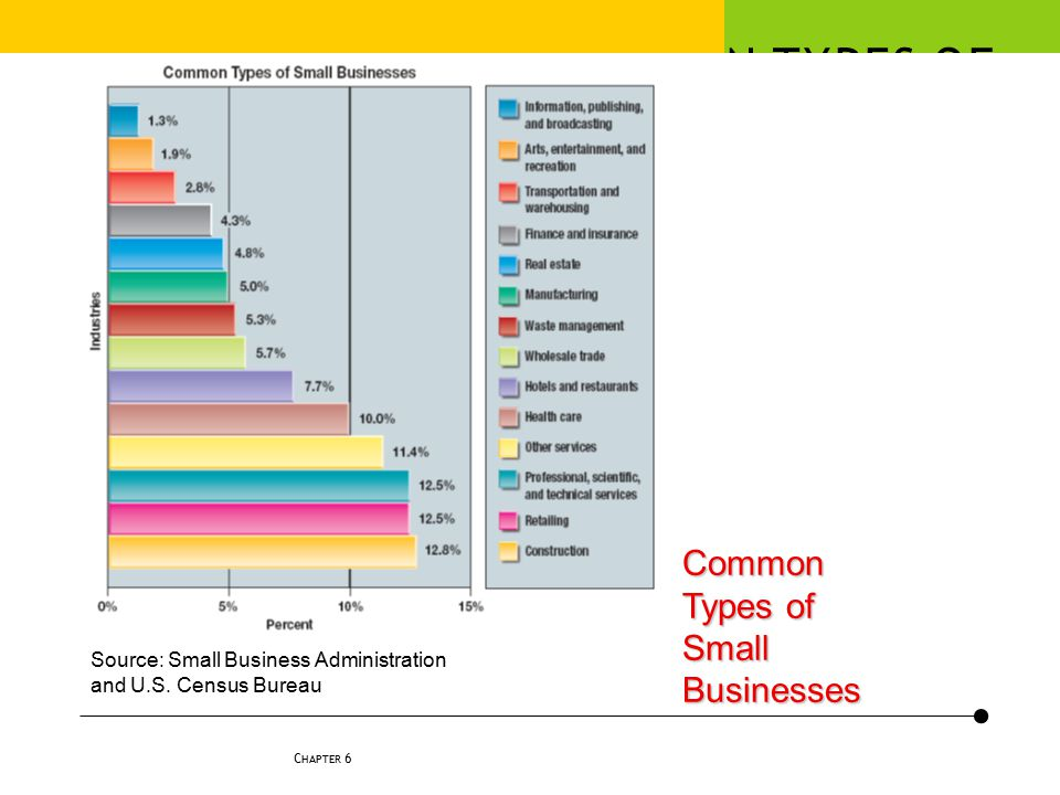 COMMON TYPES OF SMALL BUSINESSES
