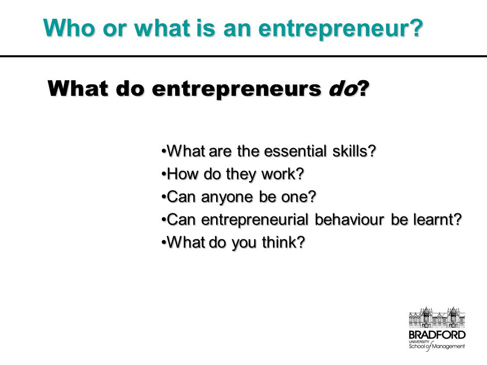 Who or what is an entrepreneur